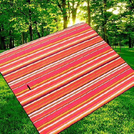 XX纯棉帆布户外野餐垫